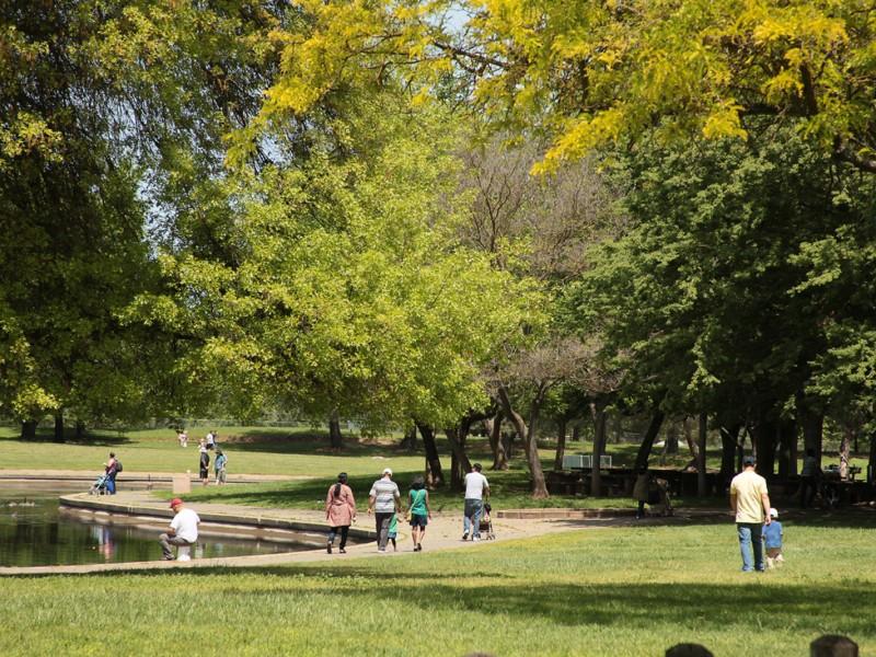Dog Park Sacramento River