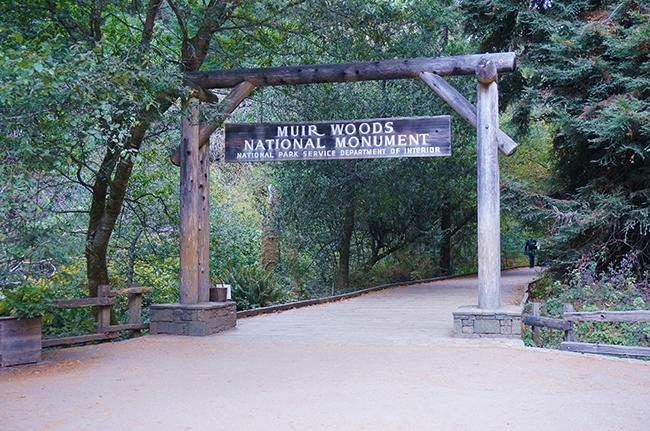 Muir Woods Signage